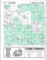 Tilden T45N-R27W, Marquette County 1995